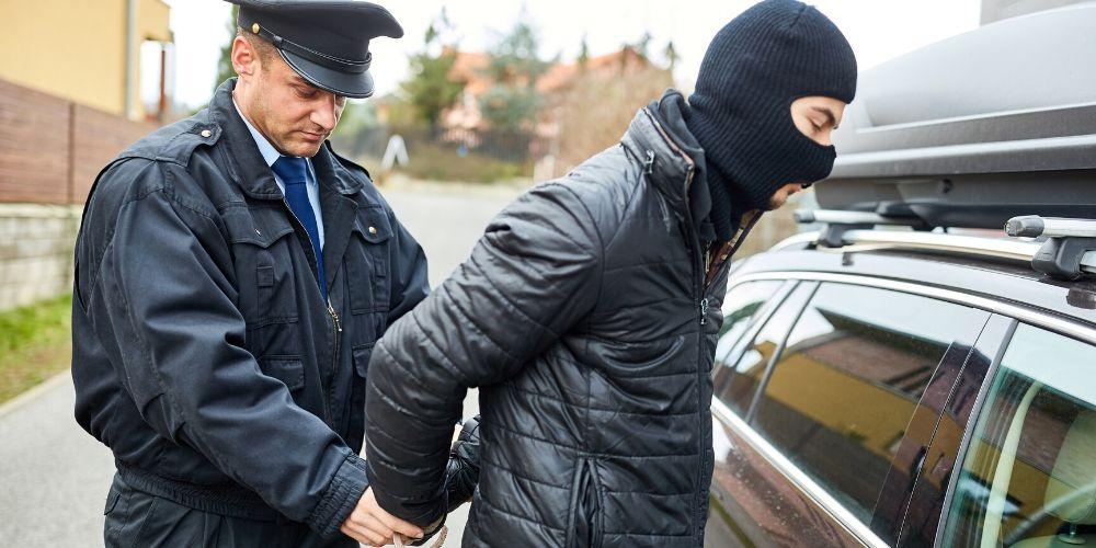 Nevada mugshot laws felonies